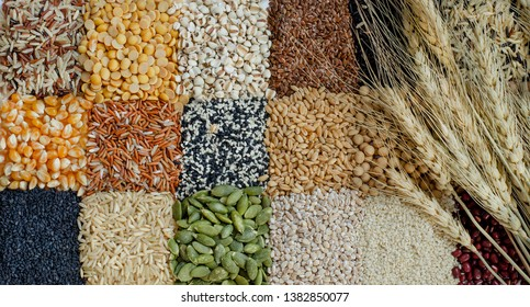 Top view of dry wheat on natural cereal background consisted of rice,soybean,job's tear,flax seed,black and white sesame,corn,barley,millet,pumpkin,and red bean