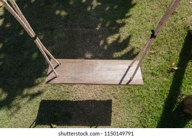 Top view of empty wooden swing hanging from a large tree with sunlight in the garden