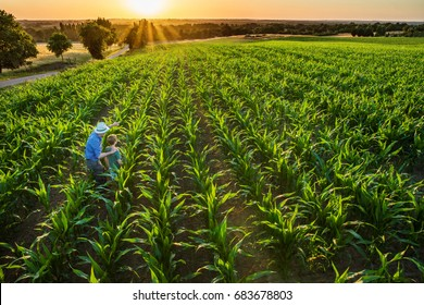 Top view. A farmer and his son standing in a cornfield at sunset. The father shows something to his son