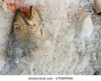 Top view fish in ice