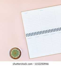 Top view flat lay workspace desk styled design office supplies cactuses succulents with copy space millennial pink color paper background minimal style. Square Template for feminine blog social media
