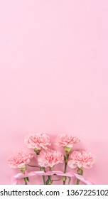 Top view, flay lay, copy space, close up, mock up, mothers day thanks design concept. Beautiful fresh blooming baby pink color carnations isolated on bright pink background