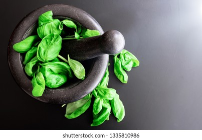 top view of fresh basil leaves in stone mortar with pestle