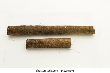Top view of fresh burdock roots.  Isolated on white background.