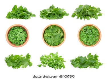 Top view of fresh coriander leaves isolated on white background.
