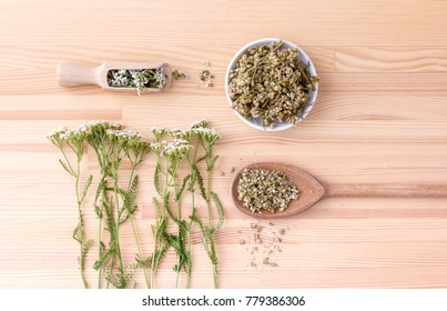 Top view of fresh and dried flowers and leaves of yarrow with spoons and bowl with a wooden background