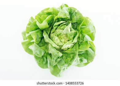 top view of fresh natural wet green lettuce leaves isolated on white