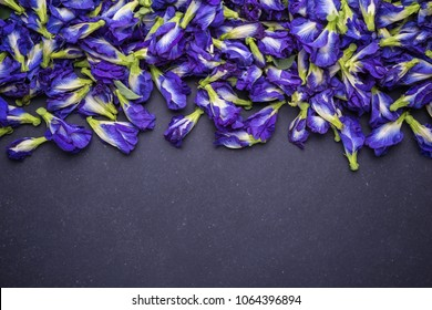Top view fresh purple Butterfly pea flower on black stone board background. Food or herb concept