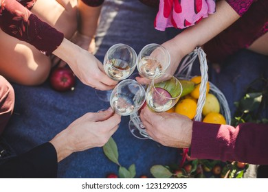Top view of friends clinking glasses on picnic