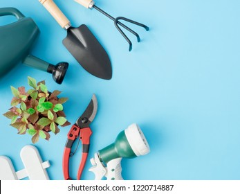 top view of garden concept with Gardening tools on blue background.