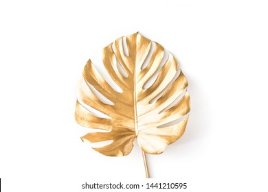 Top view of gold tropical palm Monstera leaf isolated on white background. Flat lay, view from above. Minimal concept.