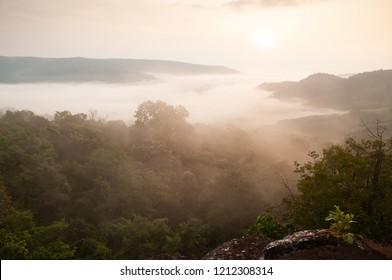 Top view, golden sunrise shines down around the mist and evergreen forest. Thai-Laos border. Na Haeo, Loei, Thailand. Winter season. Soft morning light. Warm tone.