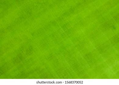 Top view of Grass Sport Field