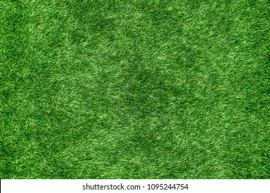 Top view of Green grass meadow border pattern. Spring or summer nature plant field lawn.Design for web,montage,banner decor.Copy space empty blank for text.