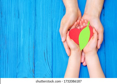 Top view of green leaf with red heart in hands of adult and child on wooden blue background. Concept of world environment day, world health day and Earth day. Copy space.
