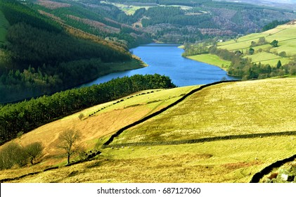Top View of Green Spring/Summer Mountain and Field, Nature of Scottish Highlands, Scotland, United Kingdom