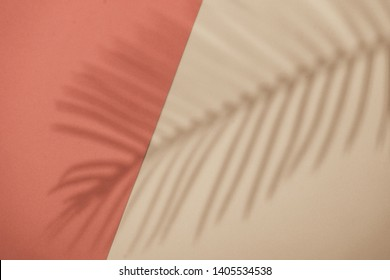 Top view of green tropical leaf shadow on orange and sand color background. Flat lay. Minimal summer concept with palm tree leaf. Creative copyspace.