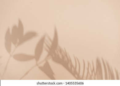 Top view of green tropical leaf shadow on sand color background. Flat lay. Minimal summer concept with palm tree leaf. Creative copyspace.