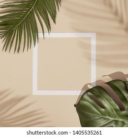 Top view of green tropical leaves and shadows on sand color background. Flat lay. Minimal summer concept with palm tree leaf. Creative copyspace with paper frame.
