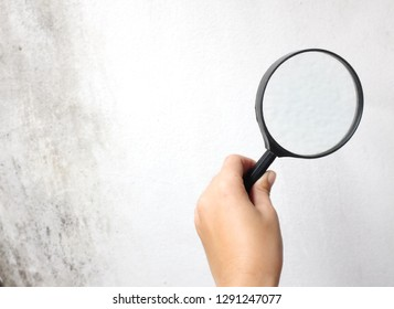 top view  hand holding a magnifying glass on a white background