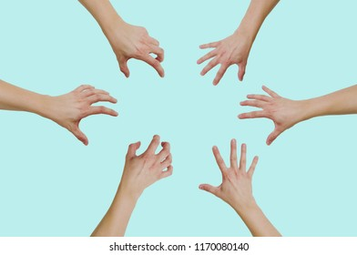 Top view of hands reaching for something isolated on a green, pastel background. The concept of wanting to grab something, gain.