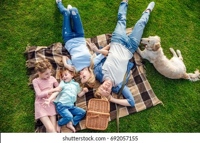 top view of happy young family with golden retriever dog resting on grass at picnic