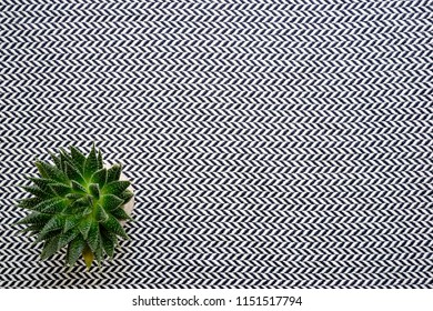 top view of herringbone pattern cloth on coffee table with spiky suculant plant in the bottom left of frame