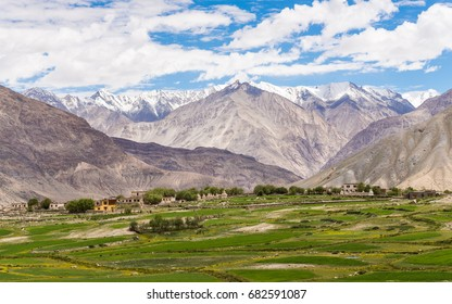 Top view of ladakh landscape, green valley field with barren mountains around, play of light and shadow on mountains, Leh, Ladakh, India