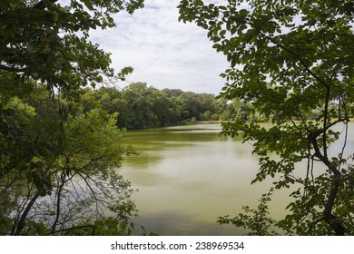 Top view of the lake with green water