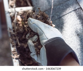 Top view man hand in gloves cleaning house gutter from leaves and dirt. Roof gutter cleaning near shingles roof in summer time