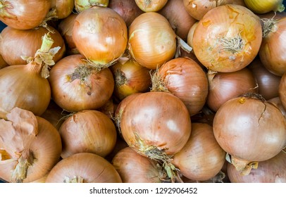 Top view of many ripe bio onions in a basket