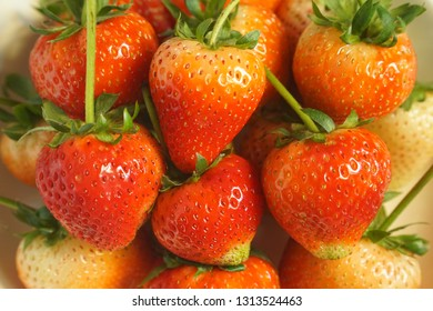 Top view of many Strawberry background. Freshness. Food frame. Great fruit.