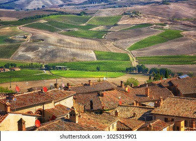 Top View of the medieval town of Montalcino and vineyards. Tuscany, Italy