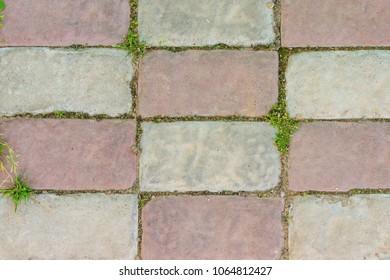 top view of multicoclored garden tile with grass - Garden Tiles
