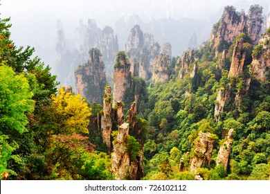 Top view of natural quartz sandstone forest among colorful fall woods in the Tianzi Mountains (Avatar Mountains), the Zhangjiajie National Forest Park, Hunan Province, China. Amazing landscape.