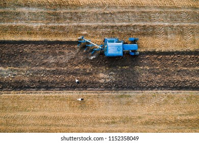 Top view of old blue belarus tractor ploughing fields. Aerial photo.