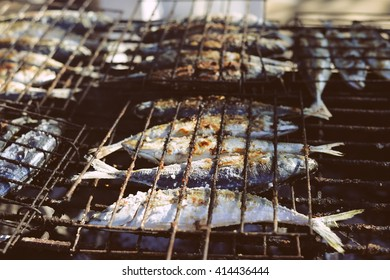 Top view on grilling sardines on barbecue, outdoors background