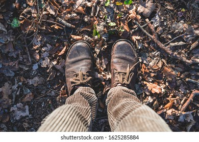 Top view on male legs and  touristic brown shoes staying on forest ground.