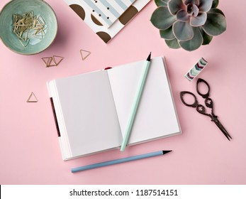 Top view on stylish stationery and succulent plant on pink background. Office desk  concept. Flat lay with notebooks, pencils, clips, scissors, washi tape.