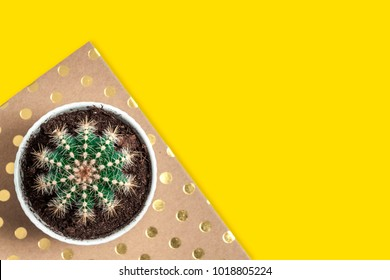Top view on a white empty desk with space for text, a dotted notebook and a cactus in a gray concrete flowerpot on the yellow background