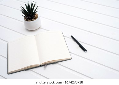 Top view open notebook, pen and plant potted on white desk background