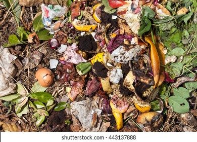 top view of organic waste. Rubbish with pieces of eggs, onions and others fruits in decomposition.