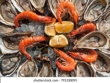 Top view oysters background with Open Oysters with shrimps and lemon wedges.