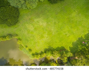 Top view of park, Natural grass texture