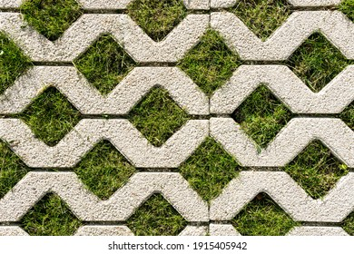 Top view of paving slabs with grass sprouting through them. Textured patterned background.