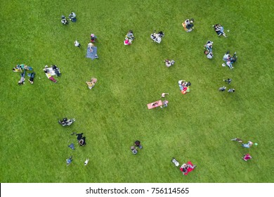 Top view of the  people sitting on a green lawn in the park