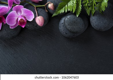 Top view of pink orchid flowers and basalt stones on black background. High angle view of beautiful blooming orchids with fern leaves, water drops and spa stones with copy space.