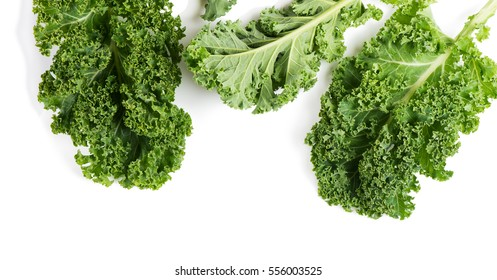 Top view of raw leaves of kale isolated on white background.