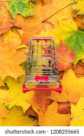 top view of red pushcart over colorful autumn leaves background. fall sale season concept