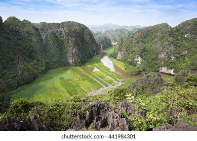 Top view of rice paddies amid limestones from Mua Caves in Tam Coc, Ninh Binh, Vietnam